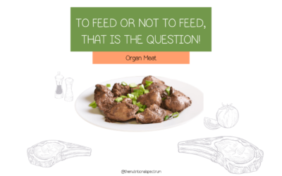 Why animal organs should be a part of your child's diet?
